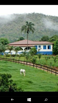 Nossa casa 🏡 Brazil Coffee, Country Life, Country Roads, Hacienda Homes, Plantas Bonsai, South America, Places To See, Fields, Beautiful Places
