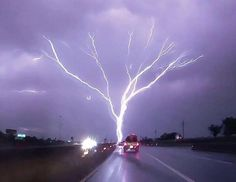"""A rare phenomenon called """"upward-moving"""" lightning also known as """"ground-to-cloud"""" lightning. Do you see the tree? 