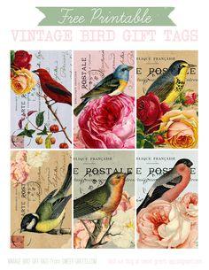 Bird Gift Tag Set | Flickr - Photo Sharing!