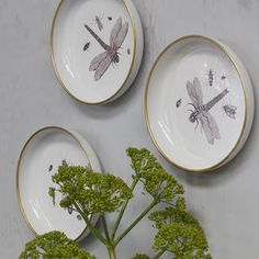 The Insect deco plates is a beautiful addition to the wall. The three metal plates have a diameter of 25 cm. Every plate has its own unique print. The prints on the plates are drawn by Lambert Lombard (approx. Living Spaces, Decorative Plates, Sweet Home, Ceramics, Tableware, Prints, Inspiration, Design, Home Decor