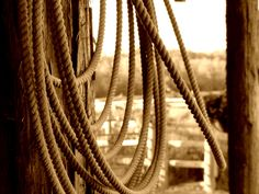 Remembrance Rope - 8x10 Photography Print. $25.00, via Etsy.