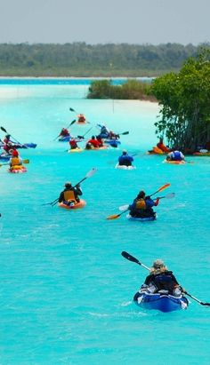 Kayaking in Bacalar lagoon, Quintana Roo, Mexico Dream Vacations, Vacation Spots, Vacation Travel, Places To Travel, Places To See, Paradise Travel, Quintana Roo, Mexico Travel, Riviera Maya