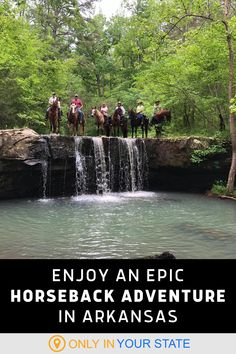 Choose your own horseback riding adventure through the Ozark National Forest in Arkansas! Boston Mountain Horse Camp offers everything from short tours to full day excursions through streams and past beautiful waterfalls. It's a perfect family day trip in nature, and a great date. Arkansas Vacations, Ozark National Forest, Horse Camp, Twin Falls, Hidden Beach, Bucket List Destinations, Beautiful Waterfalls, Family Day, Travel Info