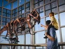 WWCC Natural History Museum (Rock Springs, WY; free; 9am-10pm))