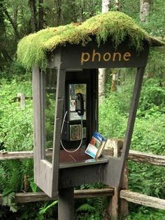Hello - who's there? Hoh, Hoh, Hoh (Phone at Hoh Rainforest visitor center.)