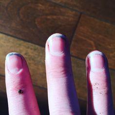 My spring manicure. #playinthedirt #soil #mulch #gardening