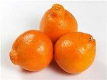 Tangelo Tree: Enjoy a Lifetime of Delicious Citrus