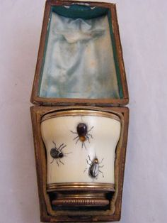 Antique enamel monocular embedded with insects--just downright cool!