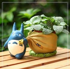 Where is Totoro going with that sack of acorns? Home, to your fairy garden! This adorable Totoro planter comes apart so you can easily water and tend to mini plants and succulents. Totoro planter is a fun addition to a bookshelf, window ledge or desk to Totoro, Fairy Garden Supplies, Gardening Supplies, Mini Fairy Garden, Garden Art, Fairies Garden, Fairy Gardening, Garden Design, Garden Ideas