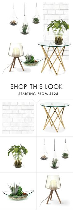 """""""Succulent plants and glass home decor"""" by atpstudio ❤ liked on Polyvore featuring interior, interiors, interior design, home, home decor, interior decorating, Tempaper and NDI"""