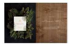 Thymes Holiday Catalog Photography by Lauren Krysti