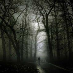 Guardai nell'illuminato cortile completamente deserto,spinsi lo sguardo verso il bosco ed eccolo lì, poco più di un'ombra sfocata sotto la grande quercia; se ne stava dritto in piedi. Rimasi incantata per qualche secondo e in un battito di palpebre la figura scomparve, non avvertii alcun senso di paura, sapevo con estrema certezza che non mi avrebbe fatto mai del male, sapevo chiaramente chi lui fosse. Era il mio custode che si stava accertando che fossi al sicuro nella mia camera. Era…