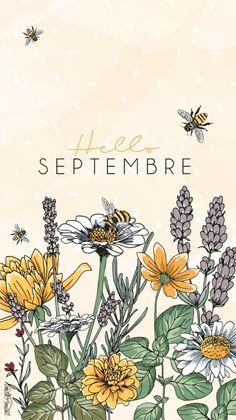 Calendar Wallpaper, Fall Wallpaper, Wallpaper Backgrounds, Iphone Wallpaper, Kawaii Wallpaper, September Wallpaper, Germany Memes, Hello September Quotes, September Pictures