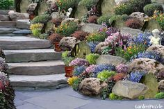 Garden design: rock garden - spring I think my MOM will LOVE :) as well . - Garden design: rock garden – spring I think my MOM will LOVE :] just like me! Sloped Garden, Succulents Garden, Rock Garden Design, Urban Garden, Garden Wall, Rockery Garden, Rock Garden Landscaping, Garden Planning, Garden Landscaping