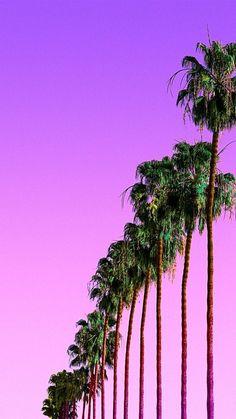 New Palm Tree Wallpaper Purple Ideas Tree Wallpaper Purple, Pink Wallpaper Backgrounds, Tree Wallpaper Iphone, Summer Wallpaper, Wallpaper For Your Phone, Of Wallpaper, Phone Backgrounds, Cute Wallpapers, Iphone Wallpapers
