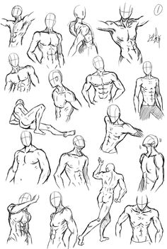 Drawing reference male different poses Anatomy Sketches, Body Sketches, Anatomy Drawing, Anatomy Art, Art Drawings Sketches, Male Pose Reference, Body Reference Drawing, Drawing Reference Poses, Drawing Body Poses