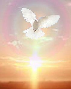 Colombes de la Paix