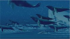 flying whale - Google Search