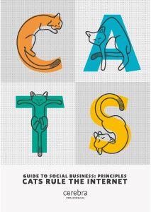 Guide To Social Business: Principles - Cerebra Social Web, Social Business, Cats, Gatos, Cat, Kitty, Kitty Cats