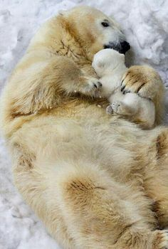 Laying With Mom!