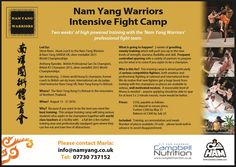 Come and join our Intensive Fight Camp in August!  www.kungfuretreat.com #kungfu #martialarts #namyang #PaiThailand #SanDa #namyangwarriors Pai Thailand, Meditation For Health, Kung Fu, Martial Arts, Flexibility, Self, Join, Learning, Marshal Arts