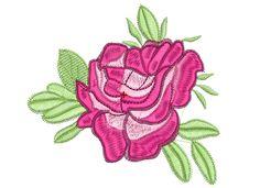 rosa linda