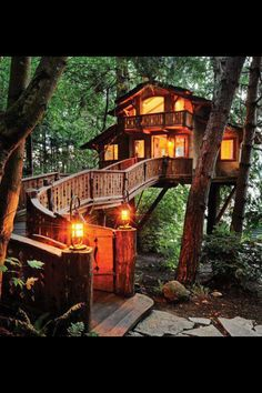 High tree house
