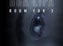 Dua Lipa  Room For 2 Download