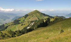Buochserhorn – Wikipedia Mountains, Nature, Travel, Human Settlement, Hiking Trails, Communities Unit, Tourism, Alps, Switzerland