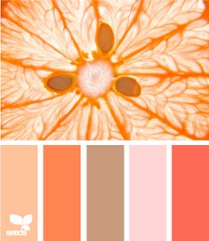 A couple of my favorite shades found on a cool site dedicated to the love of color.