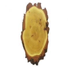 Akazie Natur Trophäenschilder für Rothirsch ca. 65x28 cm, sind aus abgelagertem Holz gefertigt und somit garantiert rissfrei. Auf der Rückseite der Trophäenschilder kann ein Kieferfach und eine Aufhängevorrichtung eingefräst werden. Bitte wählen ob mit oder ohne Kieferfach. Fallow Deer, Shop Signs, Nature, Wood
