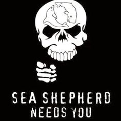The Sea Shepherd Conservation Society is a non-profit, marine conservation organization based in Friday Harbor on San Juan Island, Washington, in the United States. Sea Shepherd uses direct action tactics to protect marine life. Shark Conservation, Sea Shepherd, San Juan Islands, Save The Planet, Marine Life, In This World, Whale, Fictional Characters, Mysterious