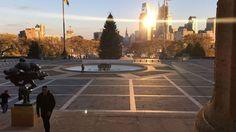Philly Christmas tree