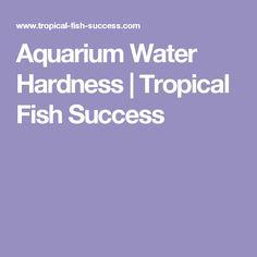 Aquarium Water Hardness | Tropical Fish Success