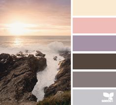 Obsessed with neutral combos- mauve/ taupe/ blush/ nude. color shore