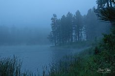 Misty - It was a hazy and wet evening at Horse Thief Lake in the Black Hills of South Dakota. Fracture Mechanics, Horse Thief, South Dakota, Photographs, Horses, River, Mountains, Outdoor, Black