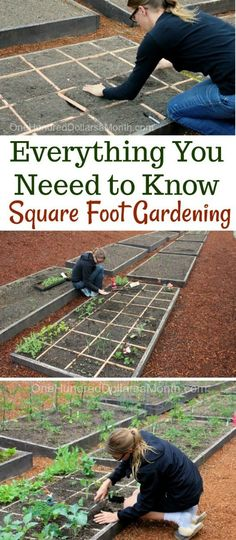 Everything You Need to Know About Square Foot Gardening, Square Foot Gardening, Square Foot Gardens, Square Foot Gardening Tips garden square feet Everything You Need to Know About Square Foot Gardening - One Hundred Dollars a Month Gardening For Dummies, Gardening Tips, Organic Gardening, Vegetable Gardening, Urban Gardening, Allotment Gardening, Veggie Gardens, Flower Gardening, Raised Garden Beds