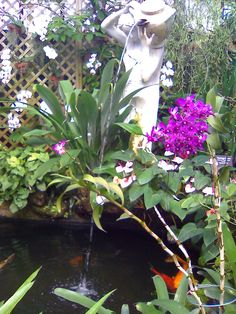 Classic Fountain Pouring Water over Koi Pond in the Orchid House Lincoln Park Conservatory, Orchid House, Koi Ponds, Garden Yard Ideas, Medium Art, Fountain, Passion, Gardening, Antiques