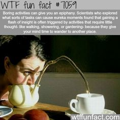 FASCINATING FACTS OF THE DAY: 20 WTF FUN FACTS FOR YOUR AMUSEMENT: http://www.chaostrophic.com/fascinating-facts-day-20-wtf-fun-facts-amusement/