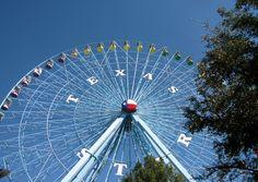 texas love   State Fair of Texas   I love Texas!