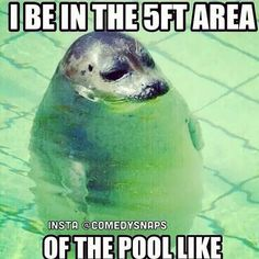 So true! That's why it's hard for me to be in a wave pool because I'm sucking in 294574 gallons of water and everyone thinks I'm having a blast.