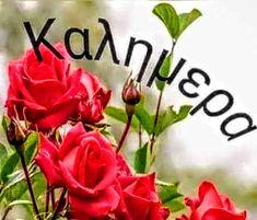 Greek Language, Good Morning, Buen Dia, Bonjour, Greek, Good Morning Wishes