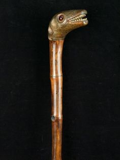 "a one piece bamboo ""Emu"" head handled cane with glass inset eyes English date…"