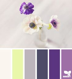 Beautiful color palette for a Baby girl nursery