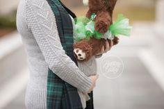 Rainbow Baby Maternity | Rainbow Baby Pregnancy | Brittany Gidley Photography LLC | Molly Bear