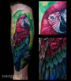 Realistic Parrot Tattoo by Kwadron Tattoo Gallery Great Tattoos, Tattoos For Guys, Awesome Tattoos, Parrot Tattoo, Tattoos Gallery, Watercolor Tattoo, Tattoo Designs, Colorful, Men