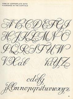 script lettering exemplar