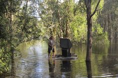 NBCnews.com : A man uses a jacuzzi cover to move a TV set through floodwaters in Cornubia, Queensland, Jan. 29. Massive summer floods have killed four people and forced thousands of people to evacuate their homes across the Australian states of Queensland and New South Wales. Reuters