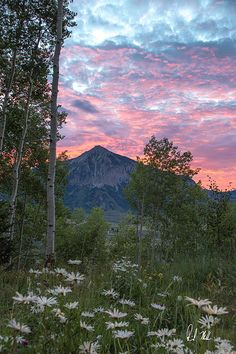 Mount Crested Butte. Colorado
