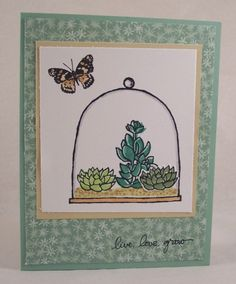Succulents Under Glass Card by HeatherHolbrook - Cards and Paper Crafts at Splitcoaststampers